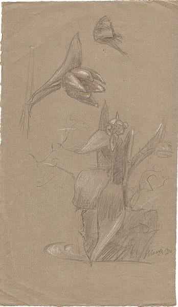 A-008 – 1926 Bloemen potlood opgehoogd wit 285×167