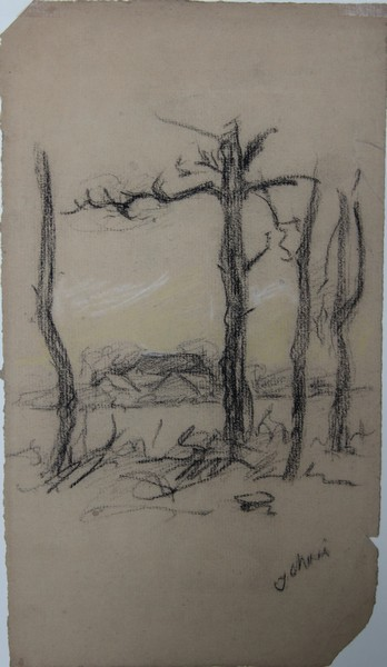 A-035 – Dorre bomen