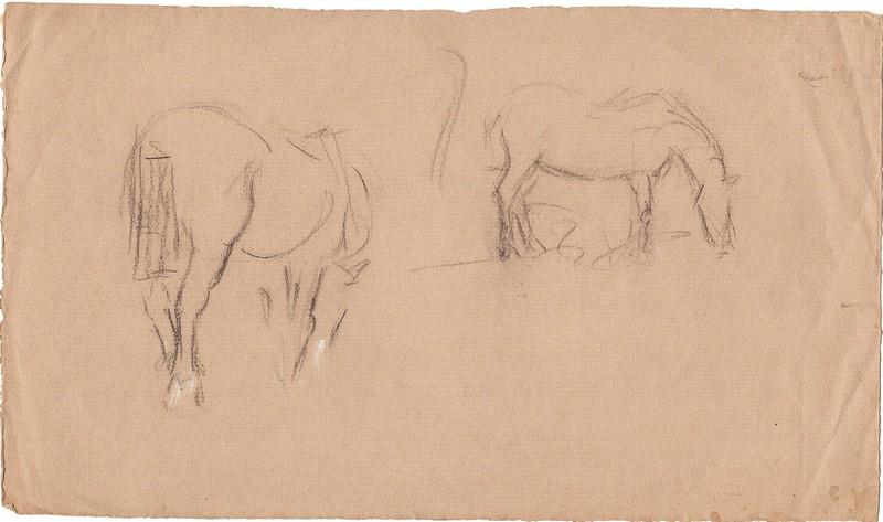 A-063 – Paarden potlood 166×286