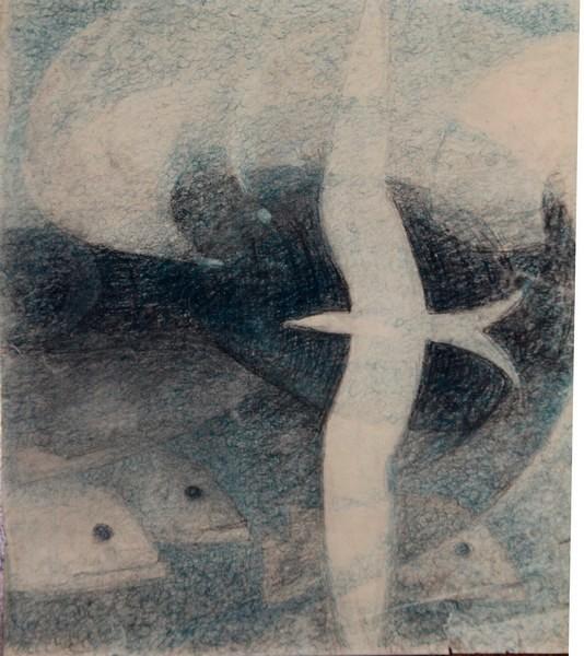C-078 – Vogel vissen  blauwzwart krijt 27×561 mm