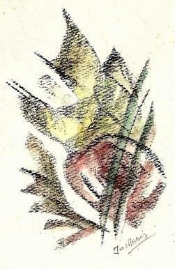 E-022 – Bloem (5) 180×130